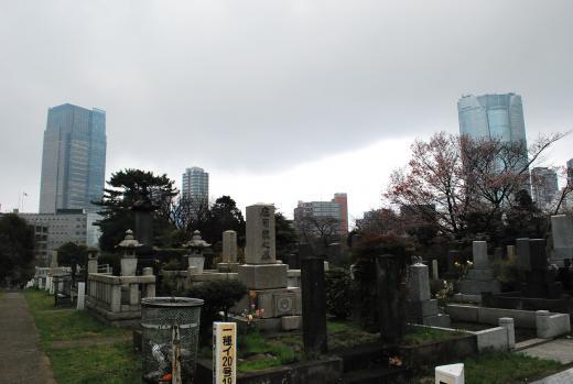 あまりの静かな雰囲気に東京であることを忘れそうになるが、見上げると高層ビルが。都会の霊園ならではの光景だ