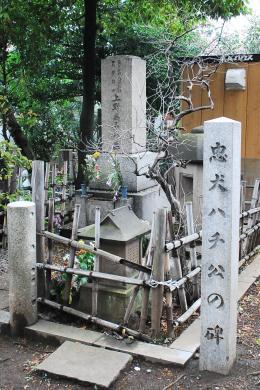 忠犬ハチ公の碑を発見!帰りを待ち続けた上野博士の隣で今は安心して眠っている