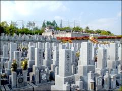 お墓の周りには生垣が植わっていて、赤と緑のコントラストはモダンな印象