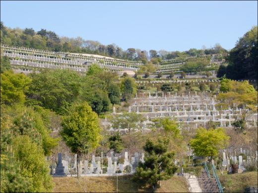斜面を利用して、ひな段状に墓碑が並んでいる