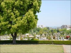 中には外国人墓地もある