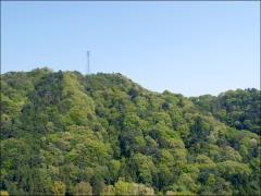 入口からスロープを上がってゆくと、山々の緑が美しい園内に到着する