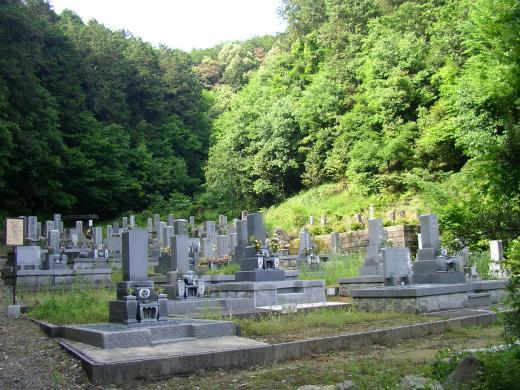 山を背に建つ墓石群