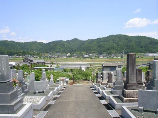 墓地からの眺めは最高