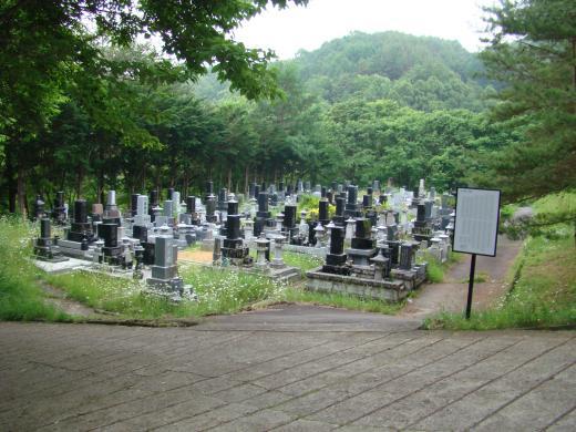 墓石は縦型、横型両方あります。特別な規格はないと思います