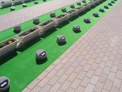 購入済みの墓所にはみかげ石に名前が彫刻されている