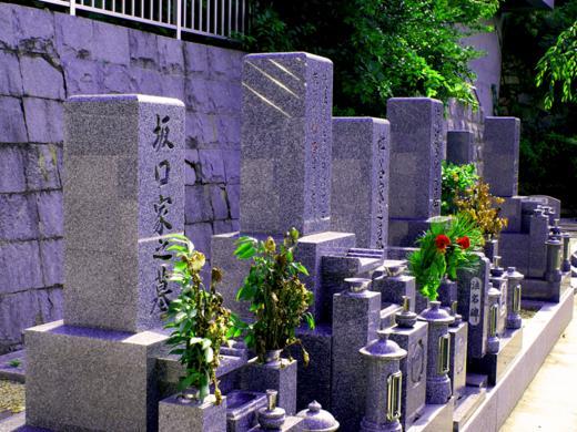 霊園内墓石