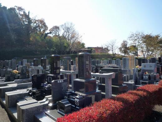 園内には様々な種類の墓石が建ち並ぶ