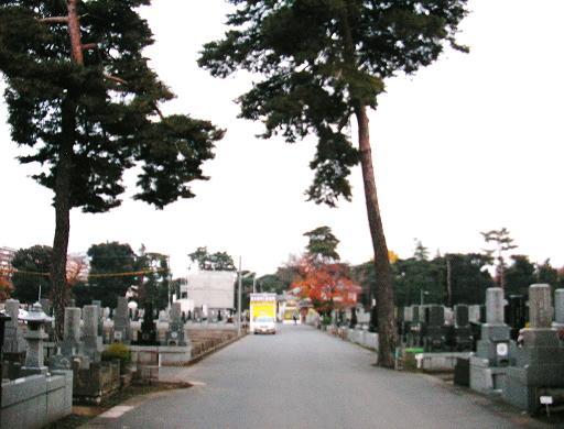 メイン園路