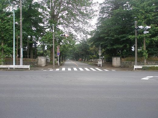 小金井門からの風景