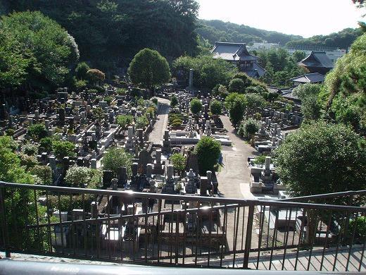 高台から見下ろした墓所の風景