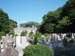 斜面に広がる墓所の全景