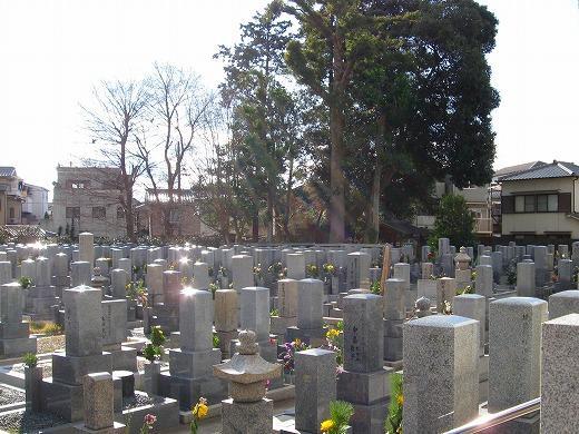 全景。社屋や住宅街の中にある墓地。道路からは少し下がった地形。