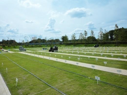 墓域内は平坦なバリアフリー設計を施している。