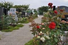 園内のそこここにバラが植えられ、見事な花を咲かせていました。
