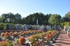 周囲の森を背景に、カラリと空が開けた日当りの良い霊園です。一番奥に見えるのは永代供養墓「和合の郷」の観音さま。