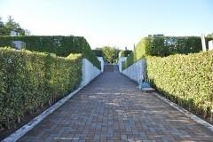 霊園中央を一直線に通るスロープの参道。左右に1区、2区・・・と平坦な墓所が並びます。