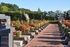 緑地付き墓所が並んだ区画。こうして見ると花にあふれた明るい印象で、「緑地付き」の効果は絶大です。