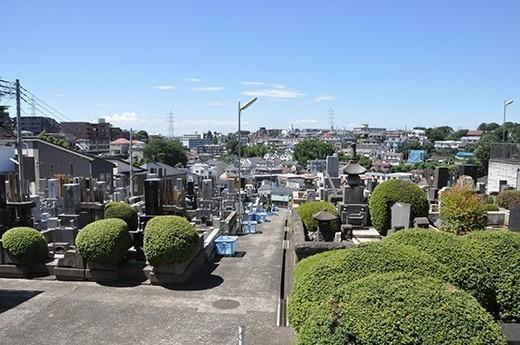 菊名・大倉山方面をはるかに望む高台の斜面。周囲は閑静な住宅街。