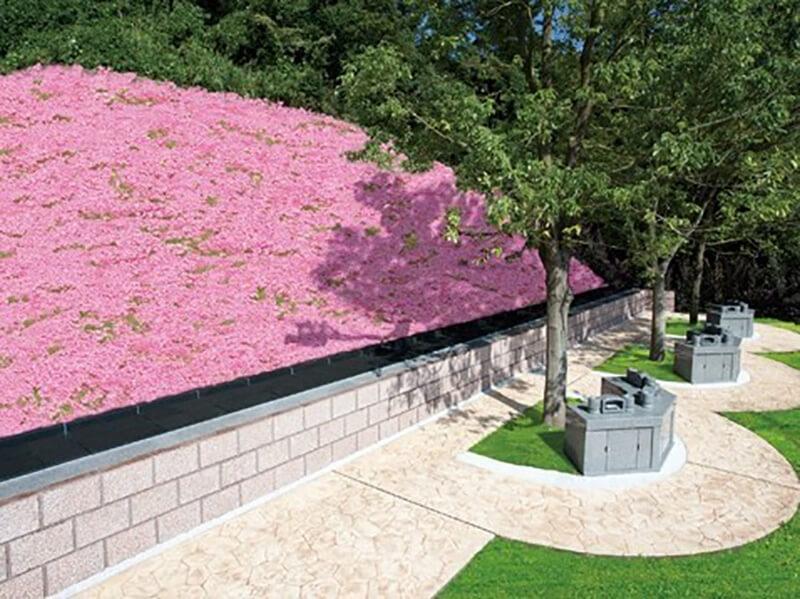 公園タイプの樹木葬の画像