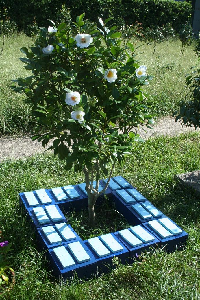 墓地を抜け出す~新たな樹木葬