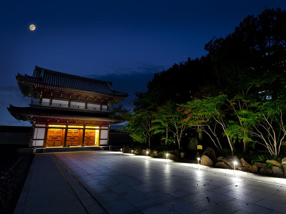 小石川伝通院の山門はライトアップされて美しく映えている