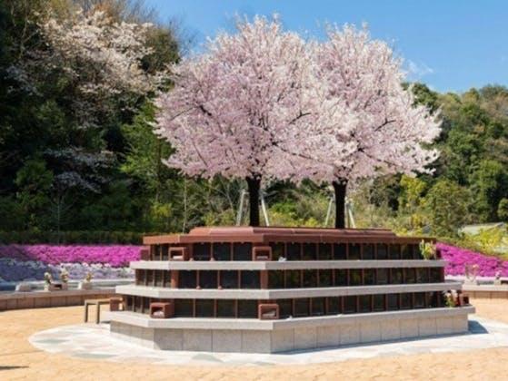 横浜三保浄苑 樹木葬