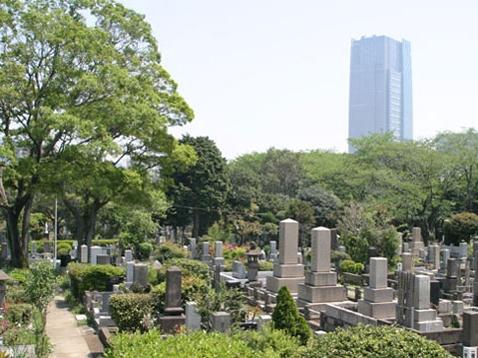 青山霊園写真