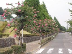 春日井市営 潮見坂平和公園