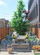 本光寺・市川聖地苑 永代供養墓・樹木葬